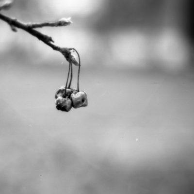 #expiredfilmday © Stephan Cremer