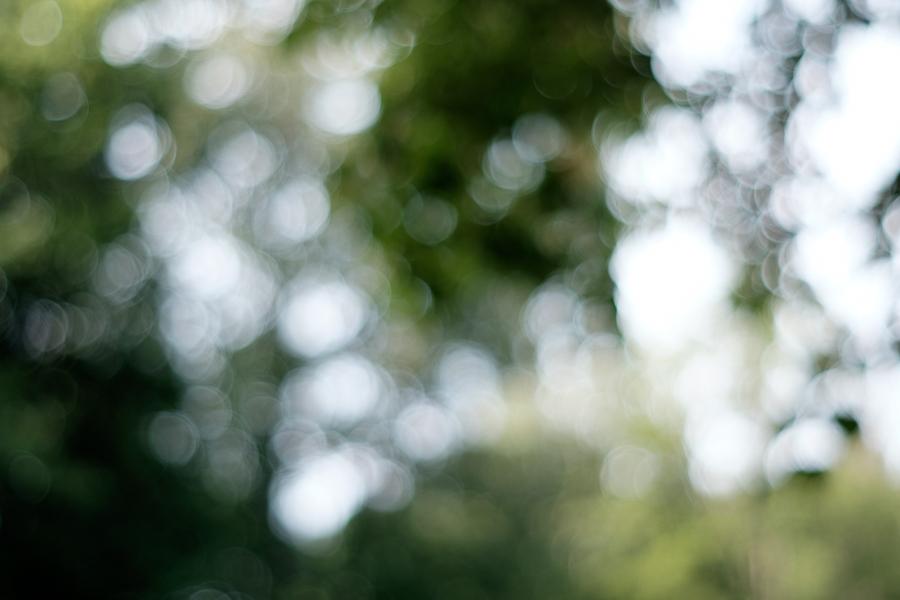 Minolta Rokkor MD 50 und Fuji X-T1 © Stephan Cremer