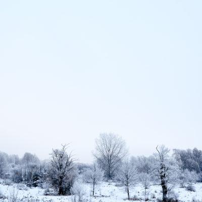 Frostigkeiten mit der Fuji X-T1 © Stephan Cremer